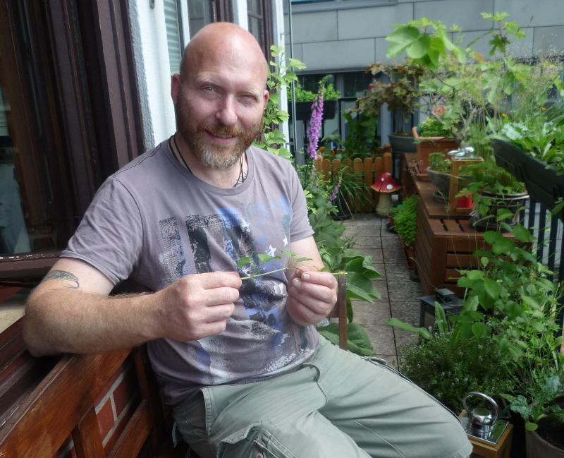 Heilpflanzengarten über den Dächern Bremens