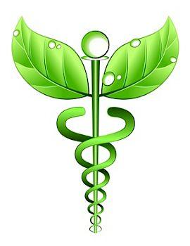 Naturheilkunde - stärke Dein Immunsystem