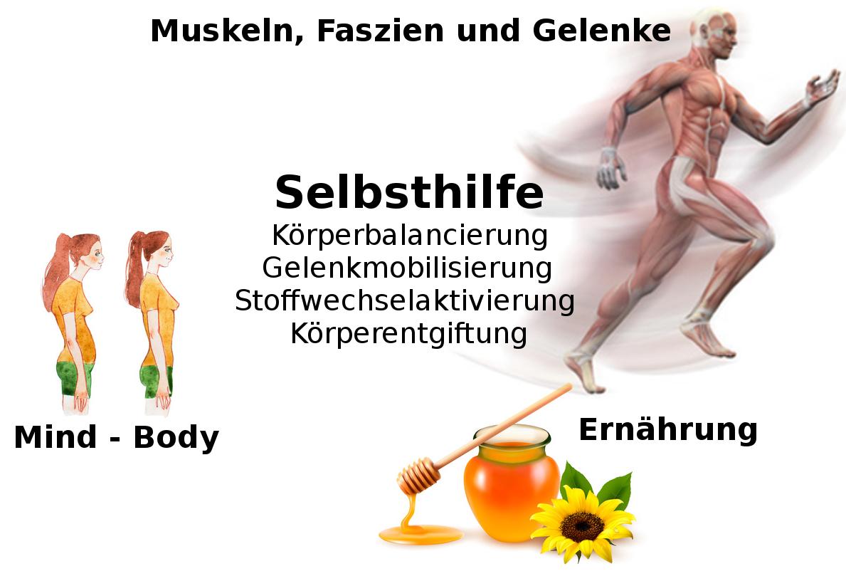Rücken und Gelenke - Die Seminarreihe \